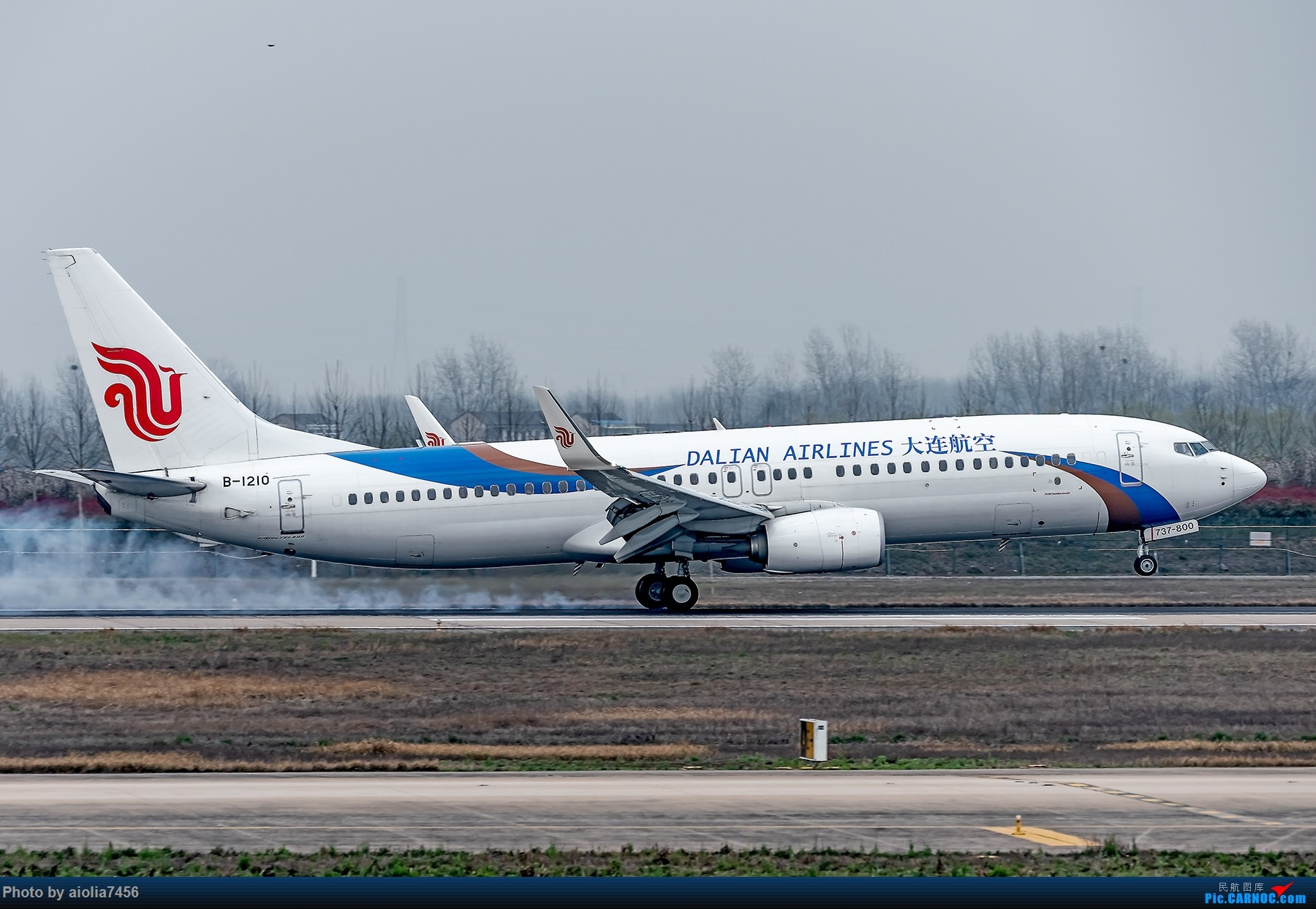 Re:[原创]{霸都打机队}儿子说,合肥为什么没有大飞机?(手动尴尬) BOEING 737-800 B-1210 中国合肥新桥国际机场
