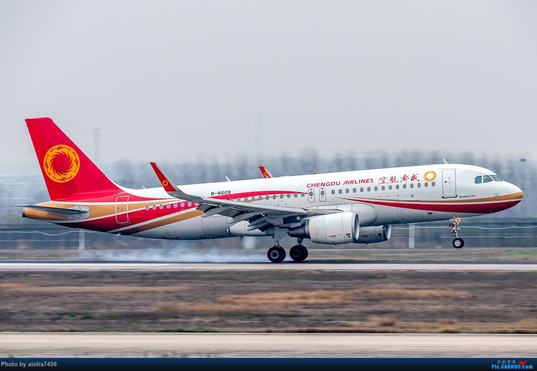 Re:[原创]{霸都打机队}儿子说,合肥为什么没有大飞机?(手动尴尬) AIRBUS A320-200 B-8609 中国合肥新桥国际机场