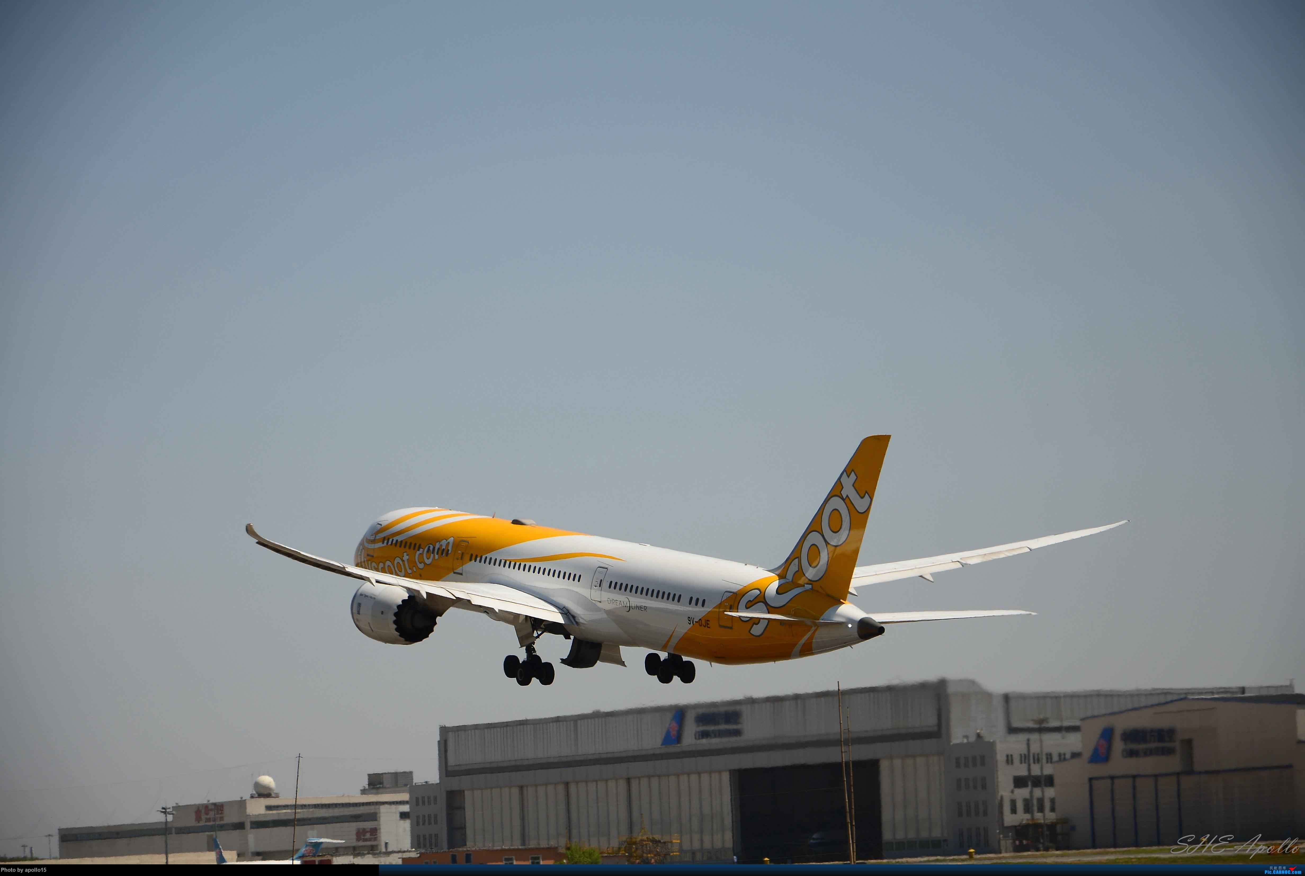 Re:[原创]Re:[原创]【SHE】五一拍机机 BOEING 787-9  中国沈阳桃仙国际机场