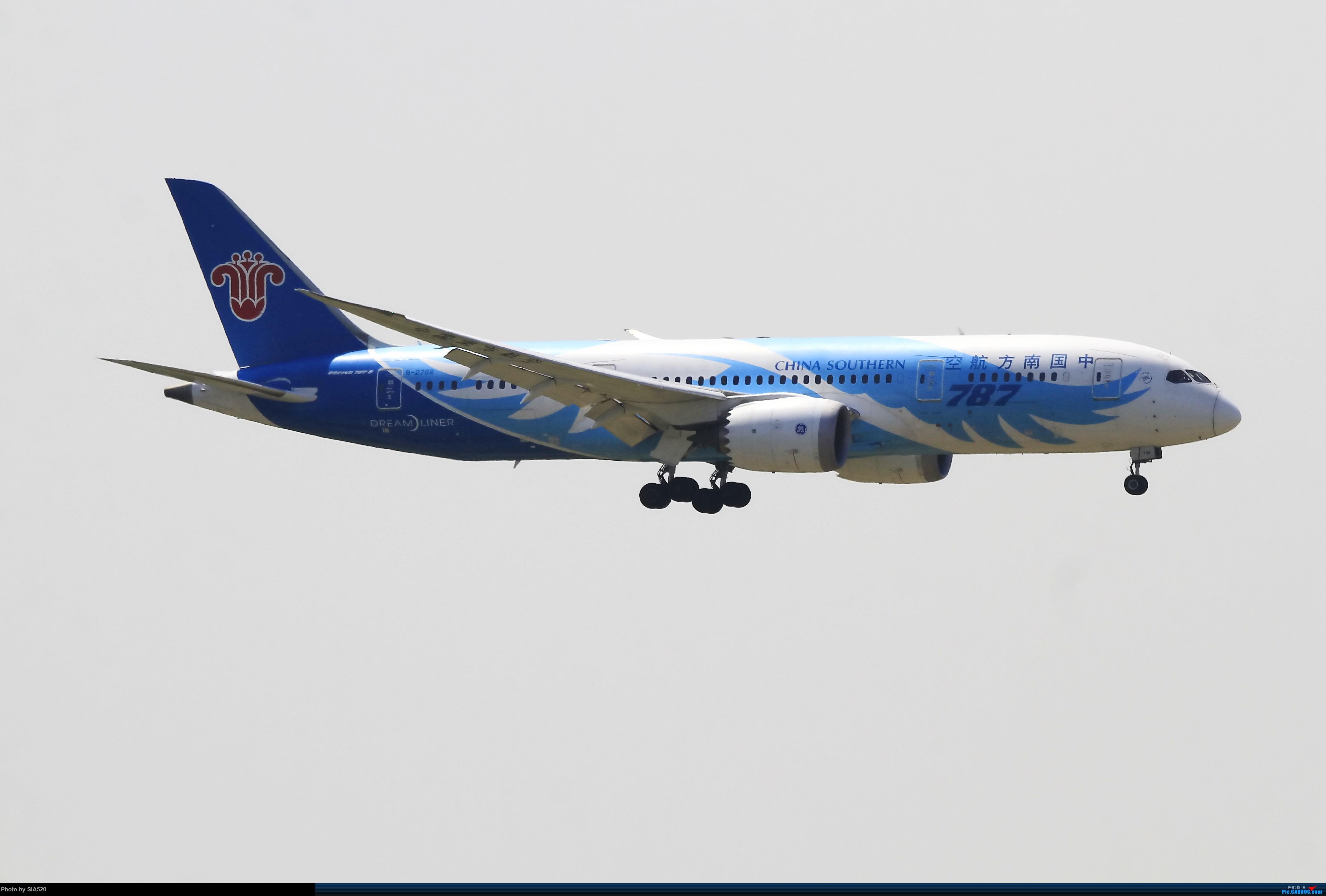 劳动最光荣—0502首都人品爆发 阿森纳蔡徐坤样样都有 BOEING 787-8 B-2788 中国北京首都国际机场