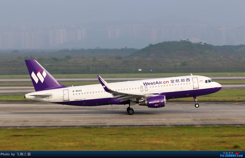 Re:[原创]CKG拍机(2019五一劳动汇报展) AIRBUS A320-200 B-8642 重庆江北国际机场