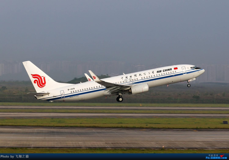 Re:[原创]CKG拍机(2019五一劳动汇报展) BOEING 737-800 B-1419 重庆江北国际机场