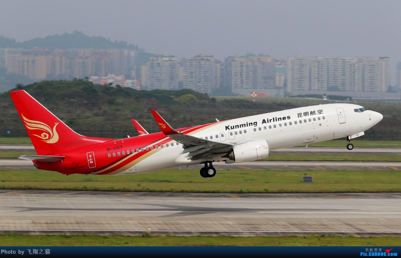 Re:[原创]CKG拍机(2019五一劳动汇报展) BOEING 737-800 B-1107 重庆江北国际机场