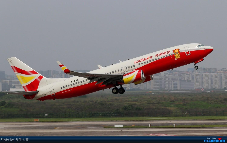 Re:[原创]CKG拍机(2019五一劳动汇报展) BOEING 737-800 B-6016 重庆江北国际机场