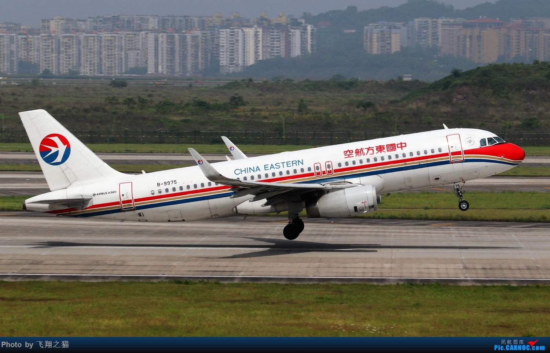 Re:[原创]CKG拍机(2019五一劳动汇报展) AIRBUS A320-200 B-9975 重庆江北国际机场