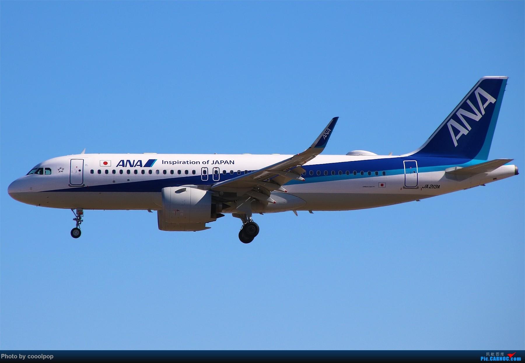 Re:[原创]PEK T3 桥上的一些大鸟!牌彩绘是要拼人品哒! A320 JA213A 中国北京首都国际机场