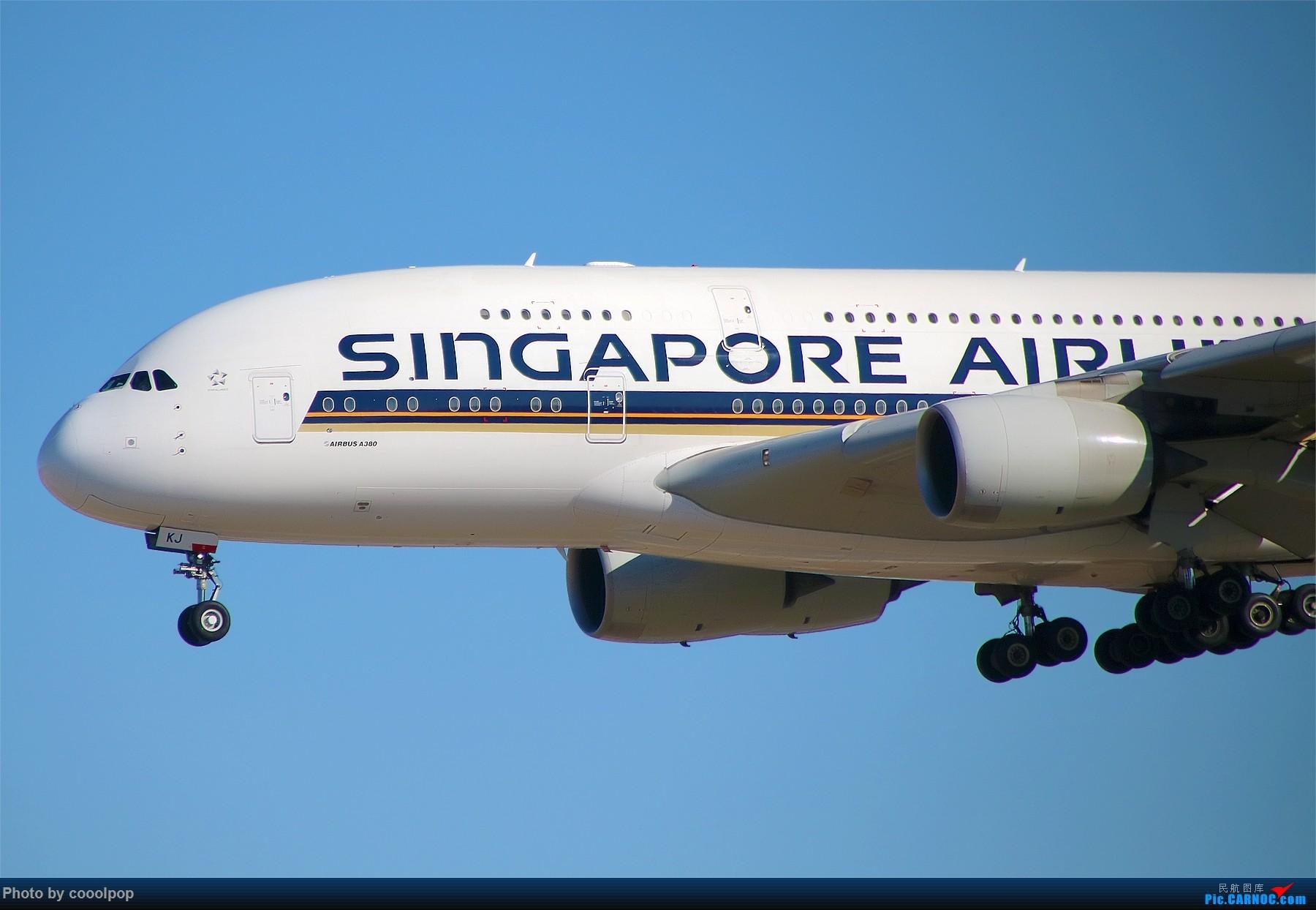 Re:PEK T3 桥上的一些大鸟!牌彩绘是要拼人品哒! A380-800 9VSKJ 中国北京首都国际机场