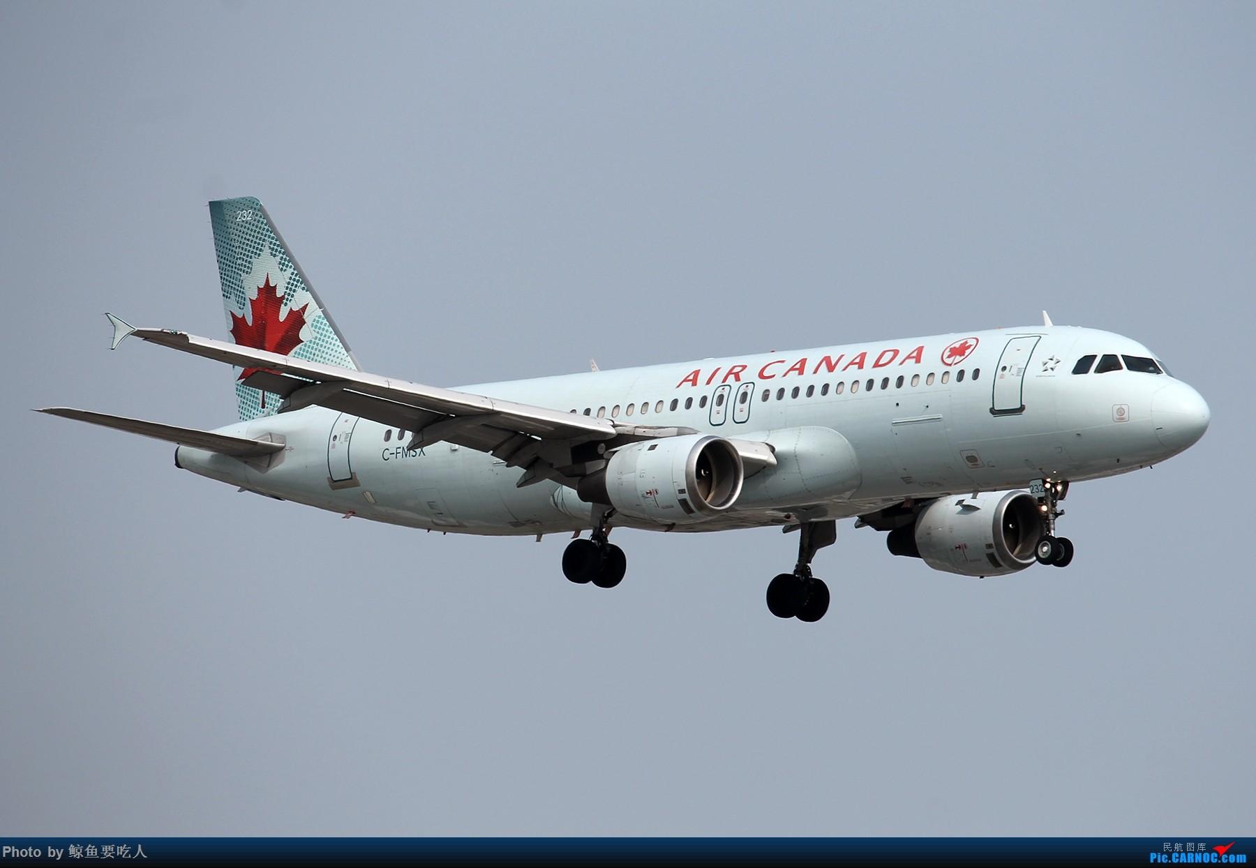 Re:[原创][YYZ] 多伦多皮尔逊国际机场随拍一组~~ AIRBUS A320 C-FMSX