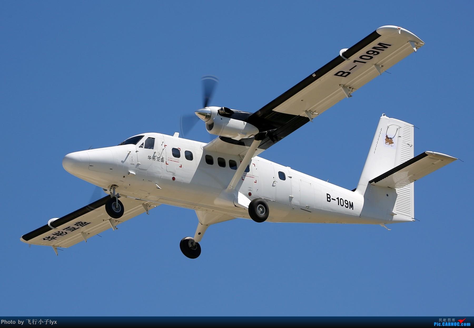 Re:[原创]【2019CIBAS】消失五百年后我又回来了。。。冒个泡 DE HAVILLAN CANADA DHC-6 B-109M 密云机场
