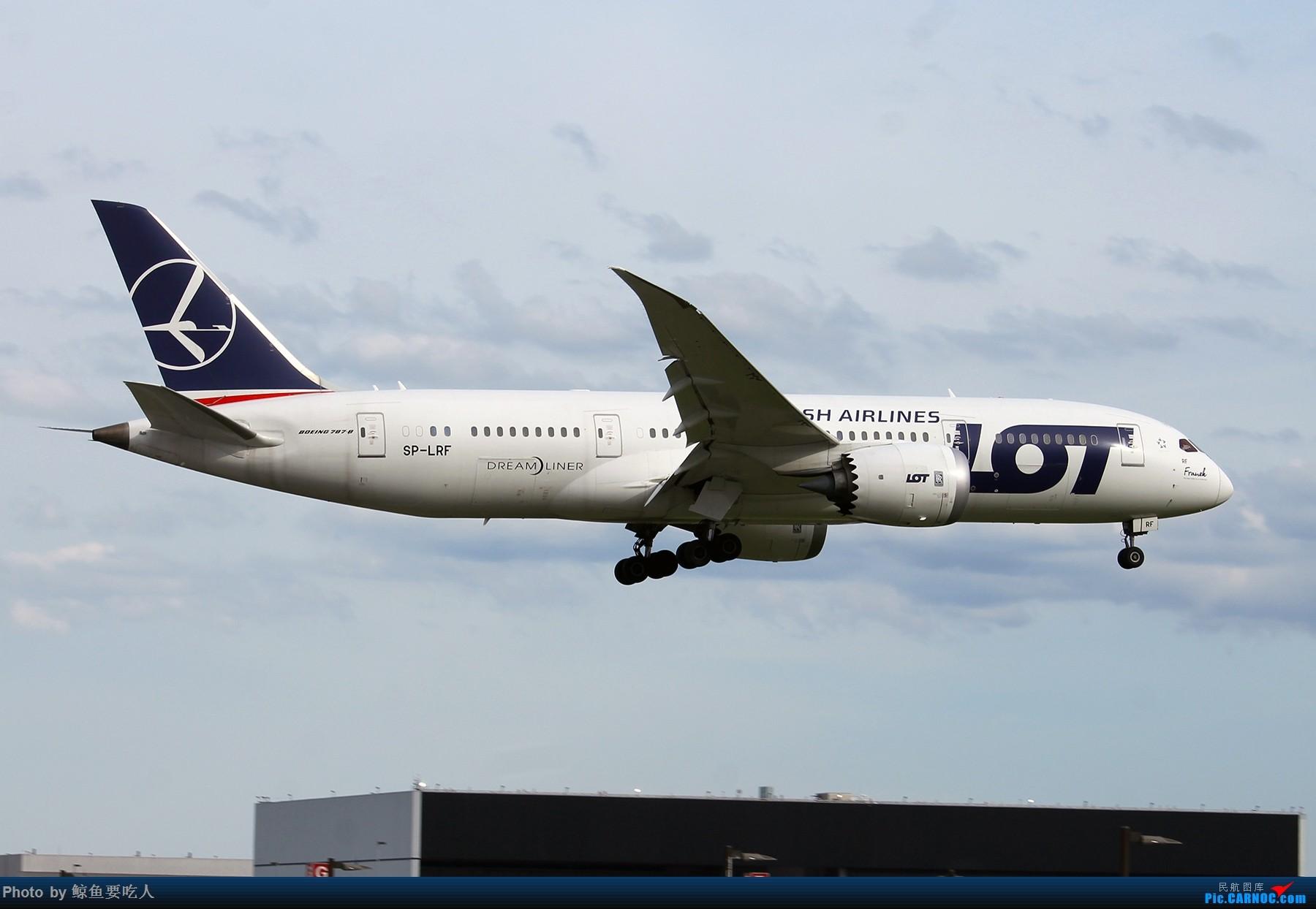 [原创][YYZ] 多伦多皮尔逊国际机场 阴天起降一组~~~ BOEING 787-8 SP-LRF 多伦多皮尔逊国际机场