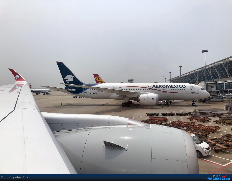 Re:[原创]【川航第二架熊猫A359飞行游记】跟着熊猫飞天游,品鉴川航优质餐 AIRBUS A350-900 B-306N 中国上海浦东国际机场
