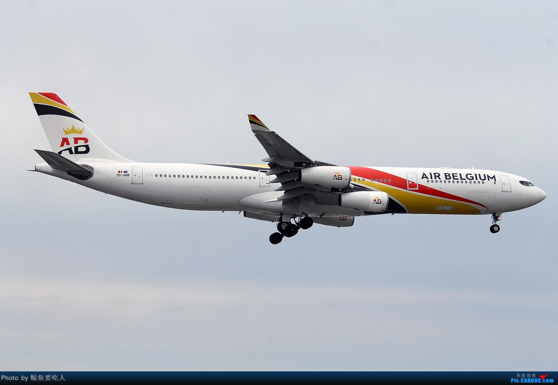 [原创][难得一图党] Air Belgium A340-300 OO-ABB @YYZ AIRBUS A340-300 OO-ABB 多伦多皮尔逊国际机场