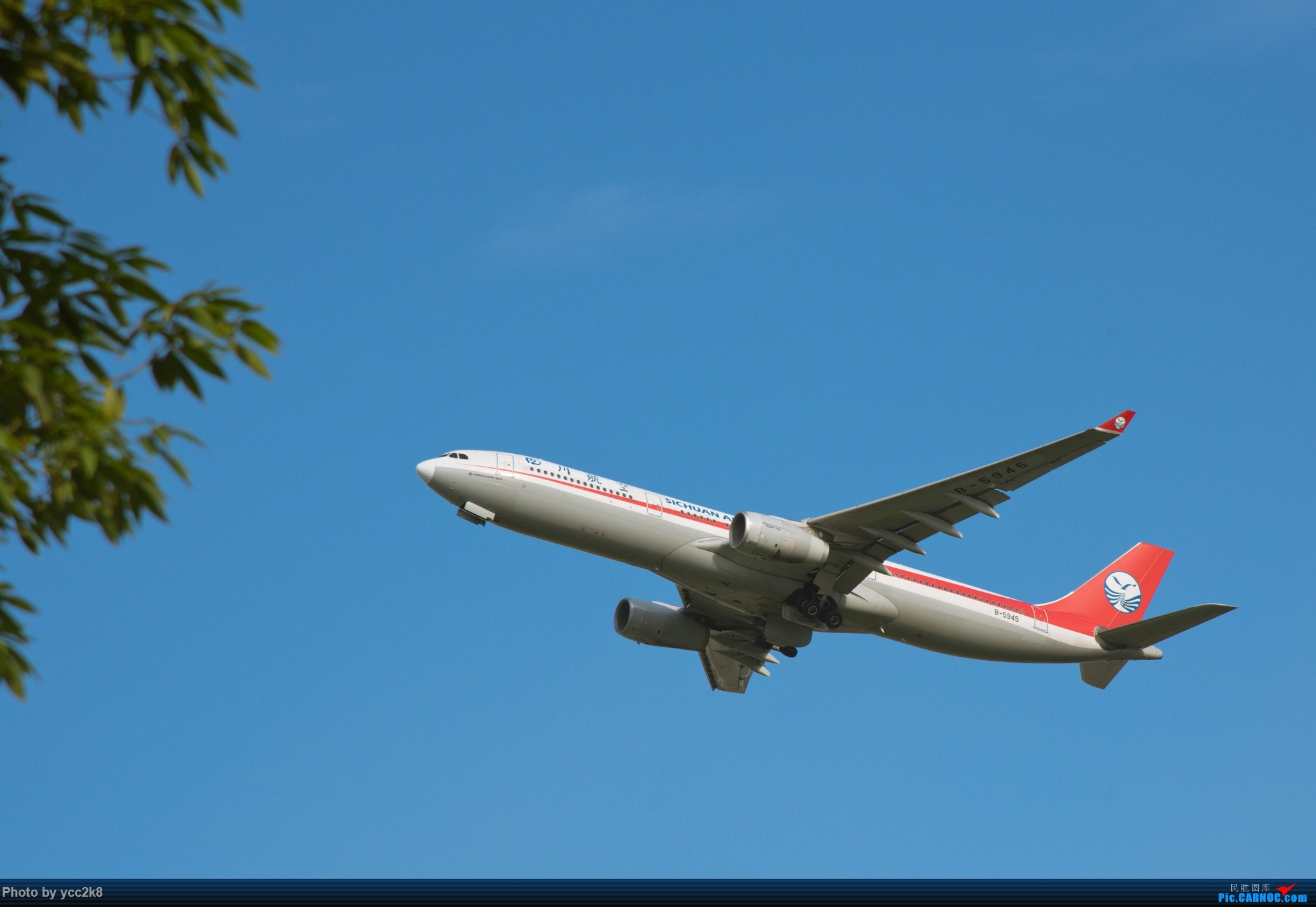 Re:[原创]CTU日常 飞行熊猫 迪士尼 川航大块头 AIRBUS A330-300 B-5945 中国成都双流国际机场