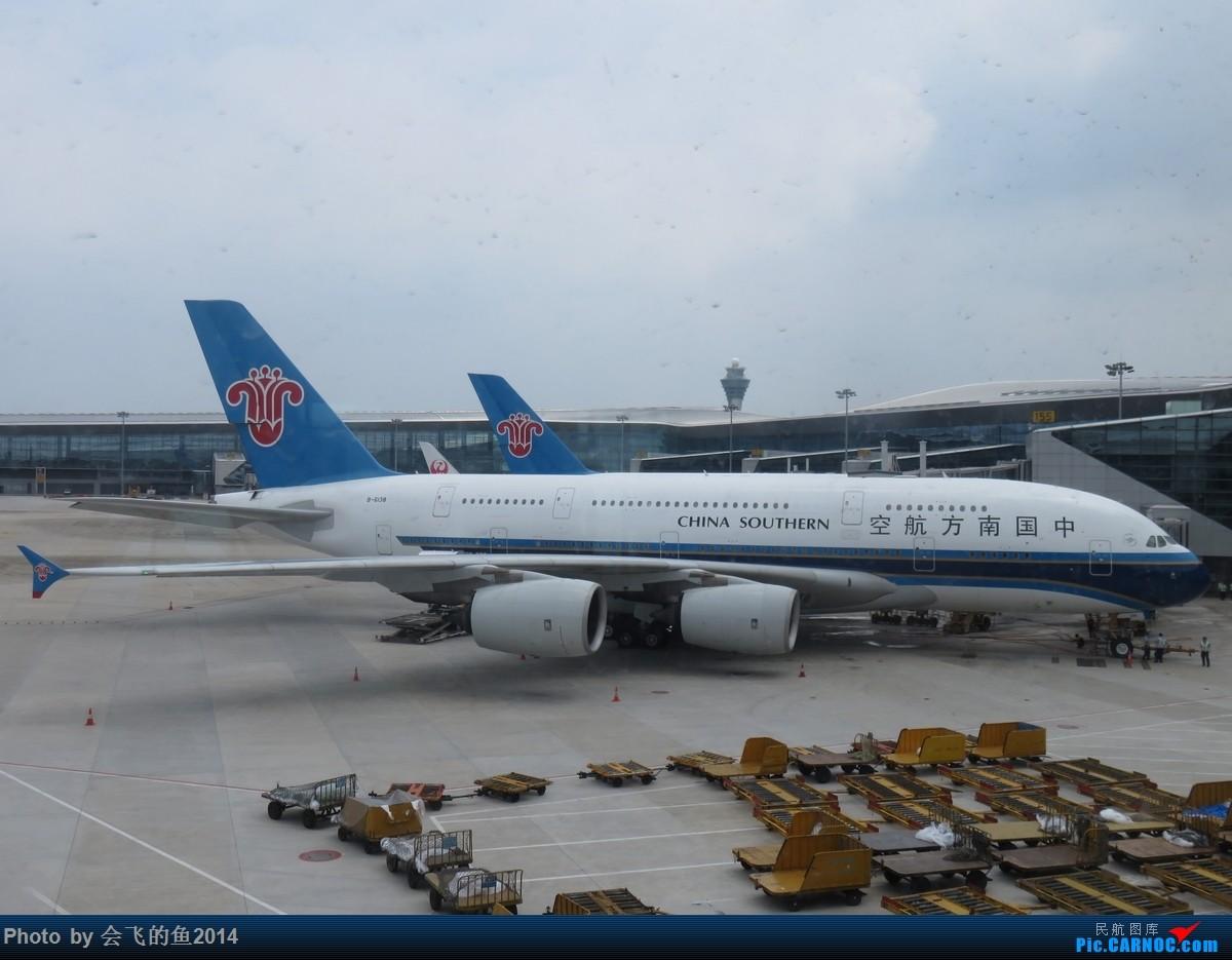 Re:[原创]2019年6月沈阳-广州-马来西亚沙巴拍机 380