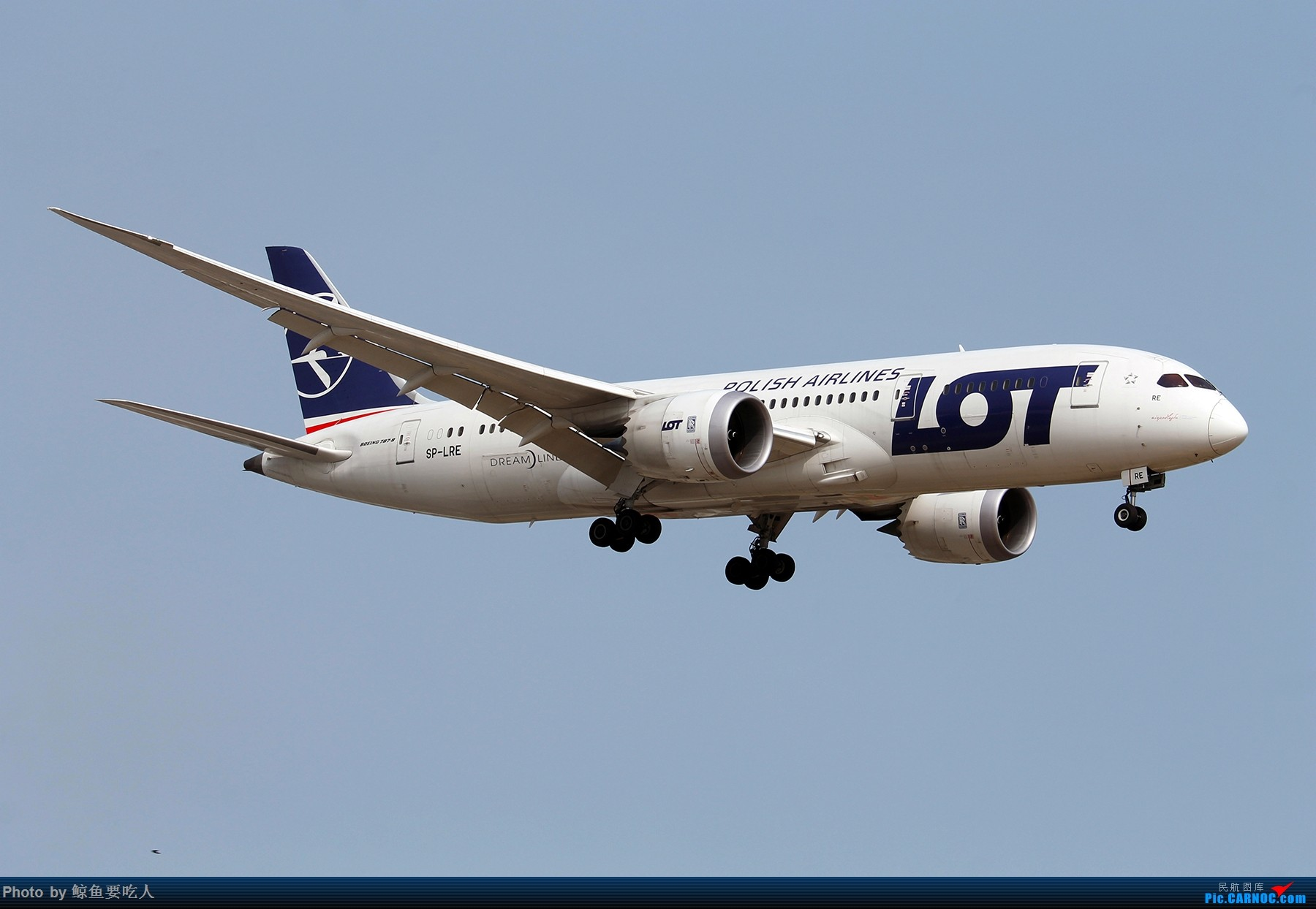 Re:[原创][Steven@YYZ] 多伦多皮尔逊国际机场晴天降落一组~~~ BOEING 787-8 SP-LRE 多伦多皮尔逊国际机场