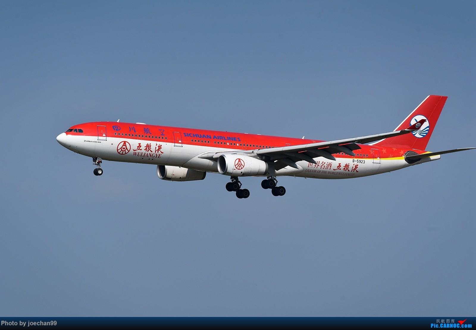 [原创]TAO偶遇川航五粮液号、吉祥航空全红彩绘机 AIRBUS A330-300 B-5923 中国青岛流亭国际机场