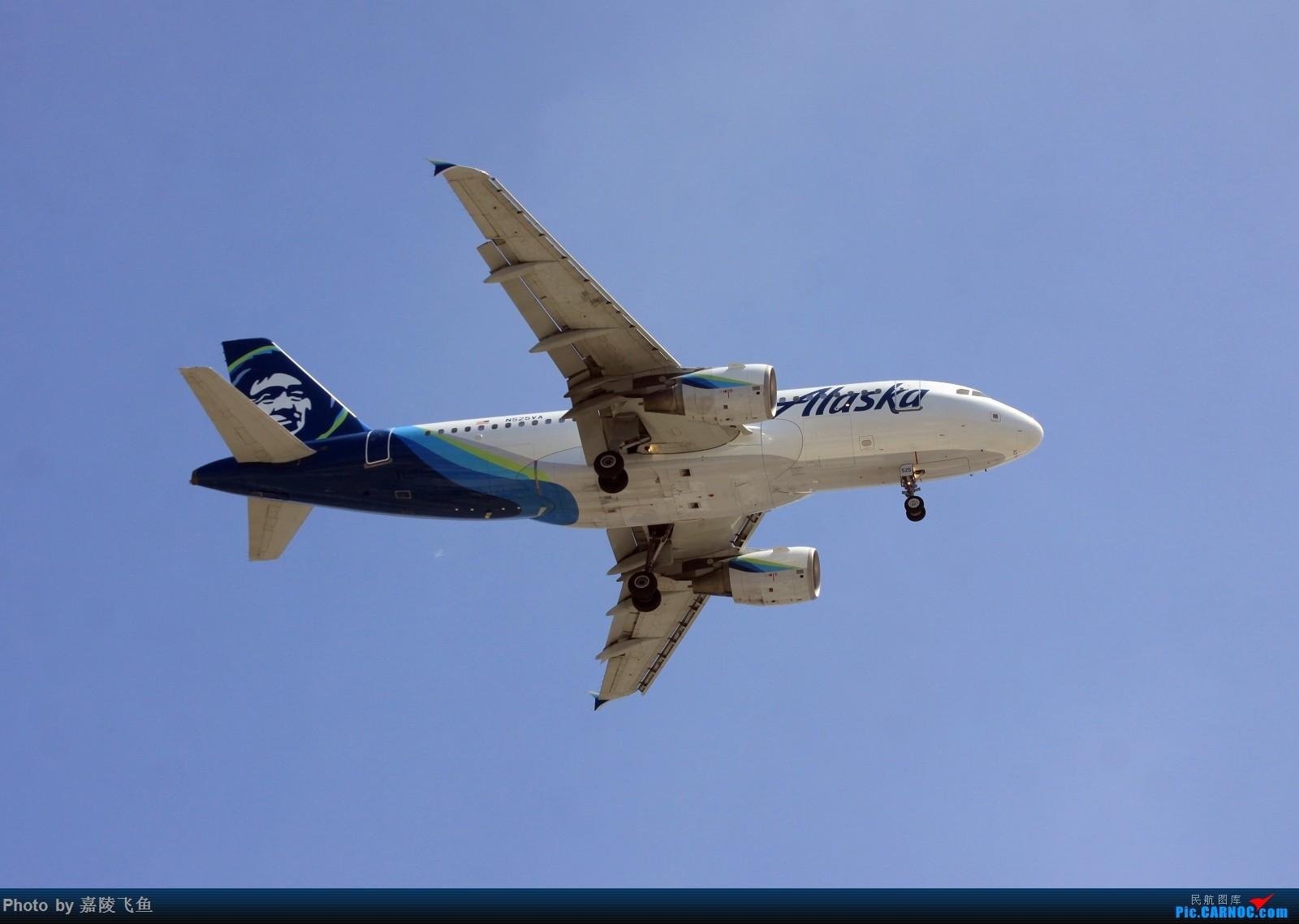 Re:[原创]忠实 边疆 阿拉斯加还有其他 AIRBUS A319 N525NA 美国洛杉矶机场