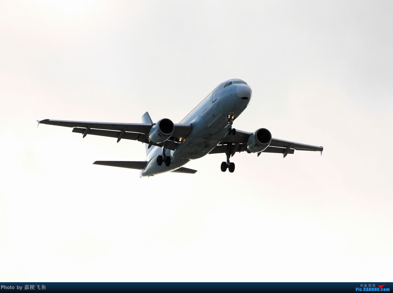 Re:[原创]忠实 边疆 阿拉斯加还有其他 AIRBUS A319 C-FZUJ 美国洛杉矶机场