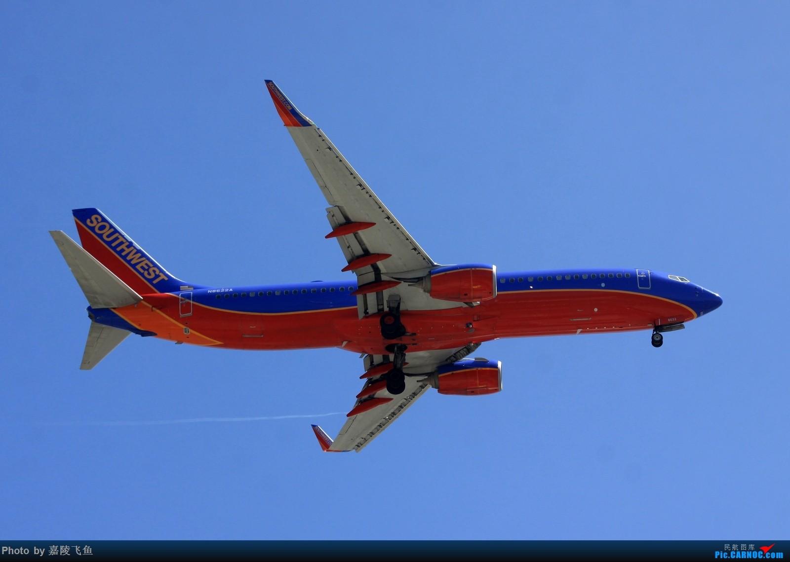 Re:[原创]忠实 边疆 阿拉斯加还有其他 BOEING 737-800 N8622A 美国洛杉矶机场