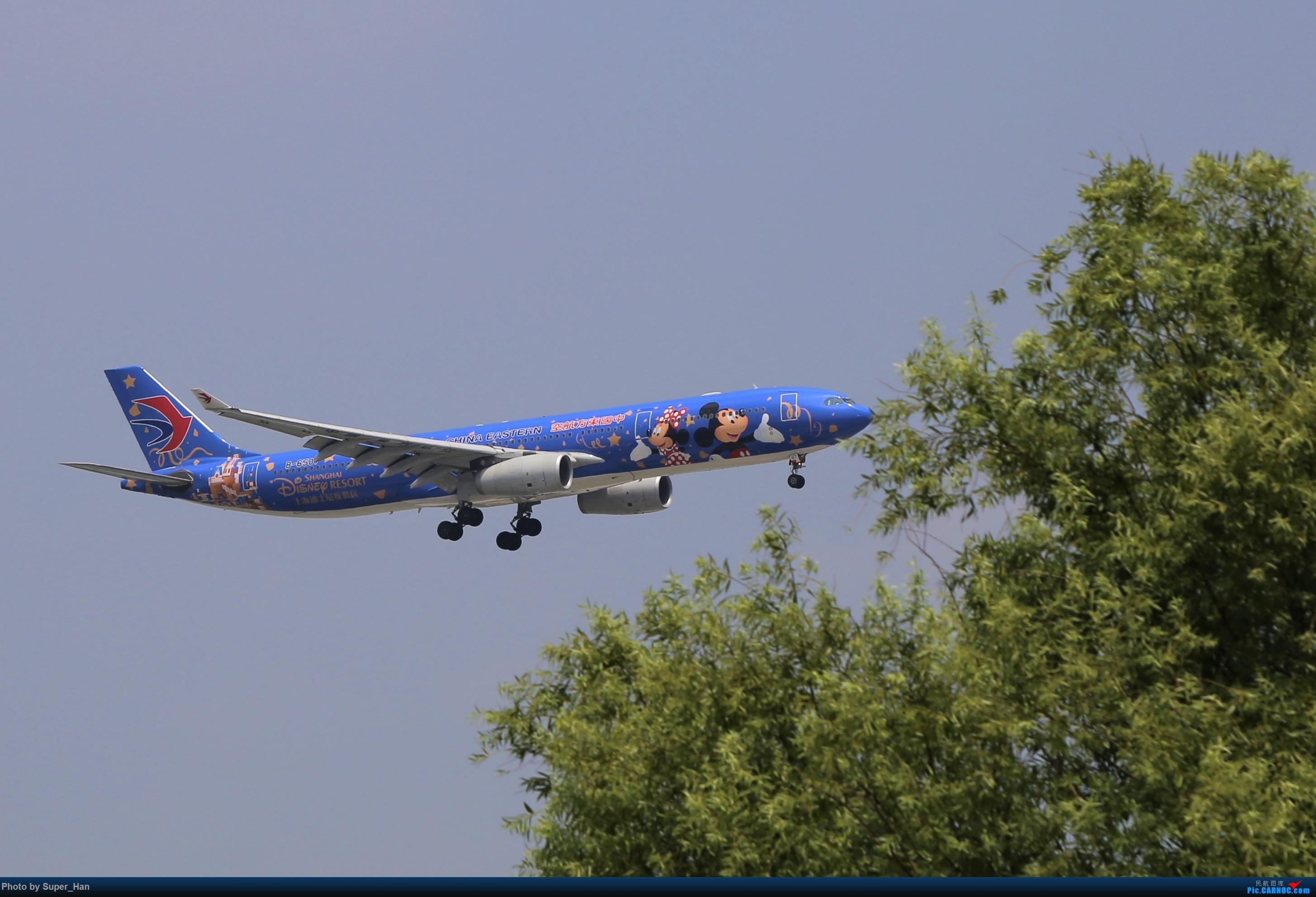 Re:0715去虹桥说走就走【最多的330篇】 AIRBUS A330-300 B-6507 中国上海虹桥国际机场