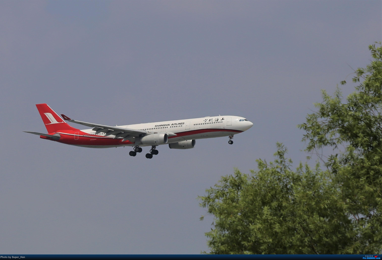 Re:[原创]0715去虹桥说走就走【最多的330篇】 AIRBUS A330-300 B-6096 中国上海虹桥国际机场