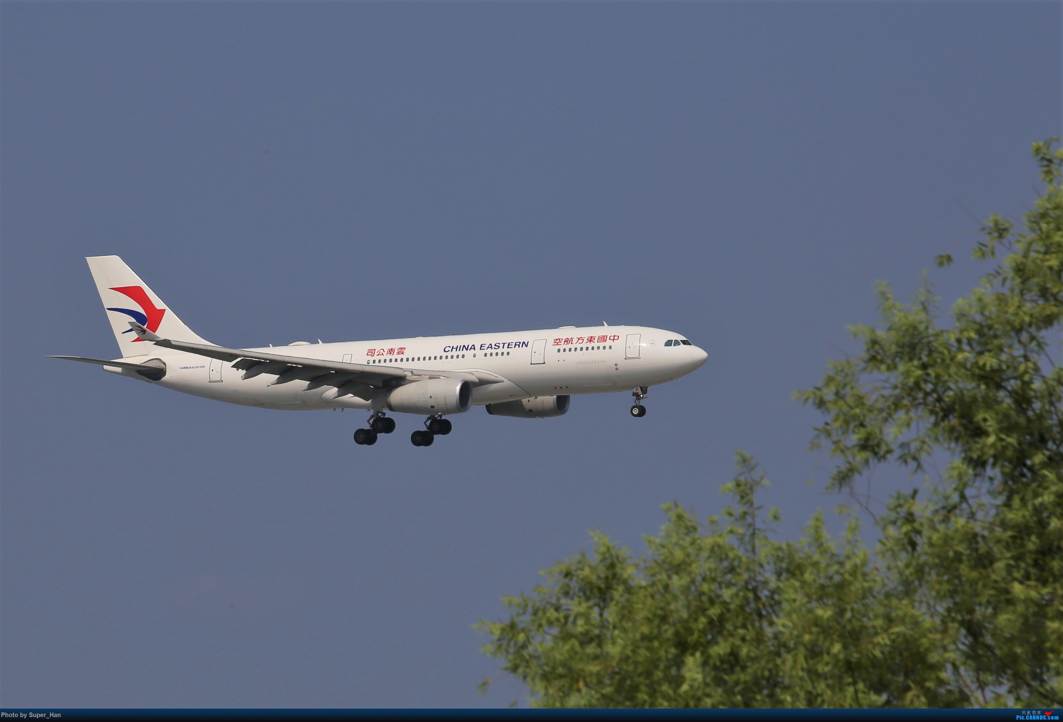 Re:[原创]0715去虹桥说走就走【最多的330篇】 AIRBUS A330-200 B-5921 中国上海虹桥国际机场