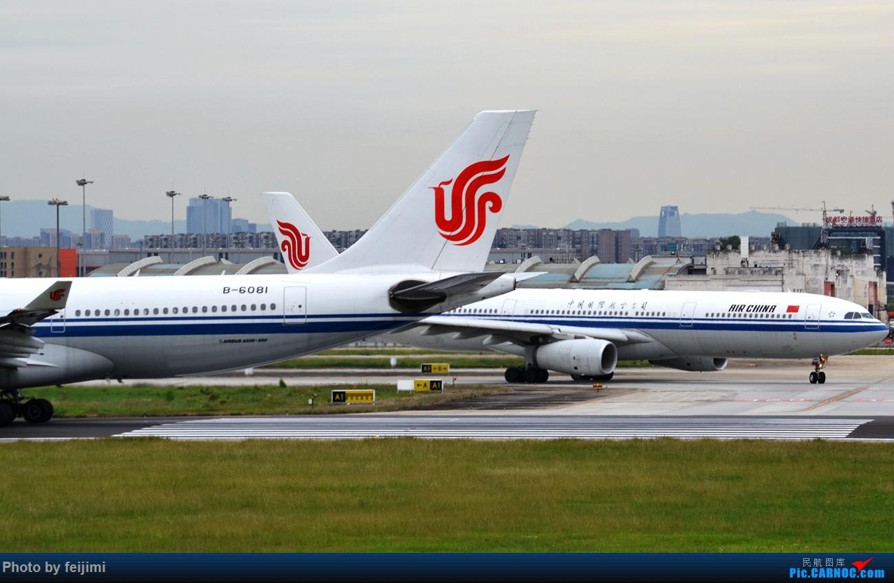 Re:[原创]--------仍在拍机 从未放弃 AIRBUS A330-200 B-6081 中国成都双流国际机场