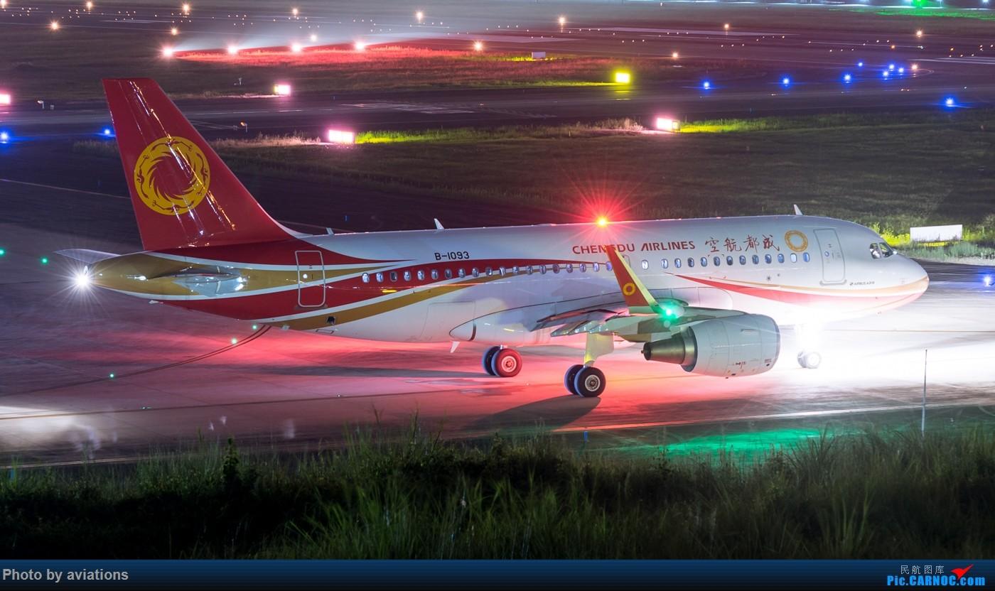 [原创]【CTU】[夜拍]双流守夜 AIRBUS A319-100 B-1093 中国成都双流国际机场