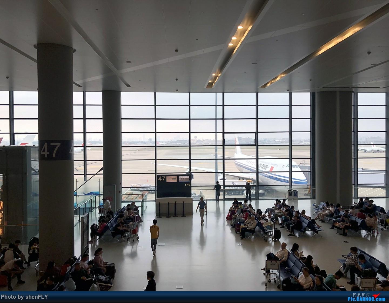 Re:[原创]【京沪快线四发之旅】国航B747-8I 超经+上层公务往返之旅    中国上海虹桥国际机场
