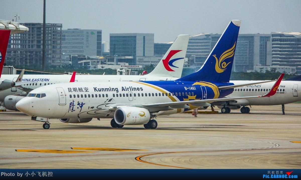 转载图 已获原作授权 BOEING 737-700 B-1461 中国厦门高崎国际机场