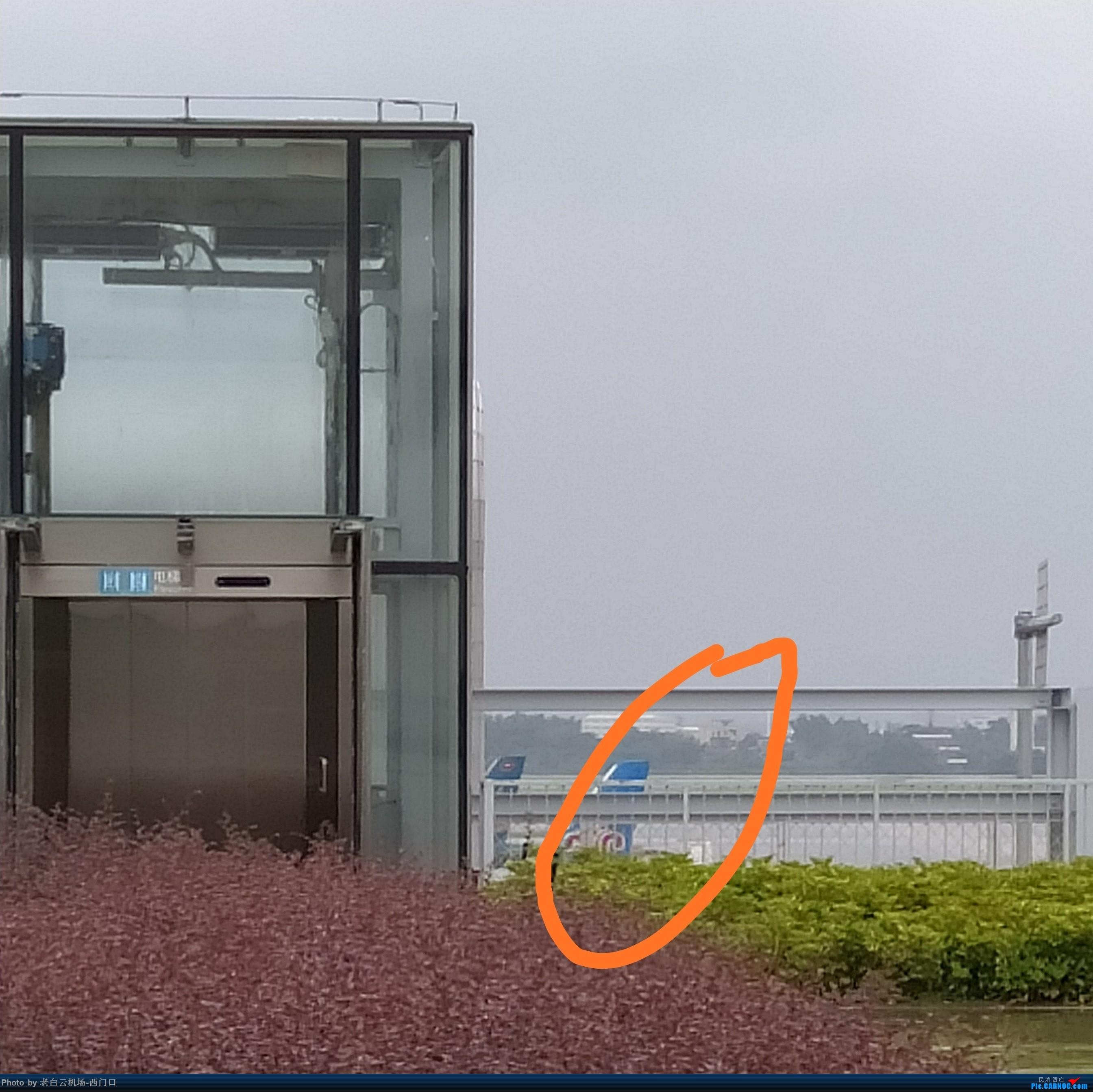 Re:[原创]【梁泽希拍机故事15】2019年第十七次拍机 AIRBUS A321-200 不明 中国广州白云国际机场