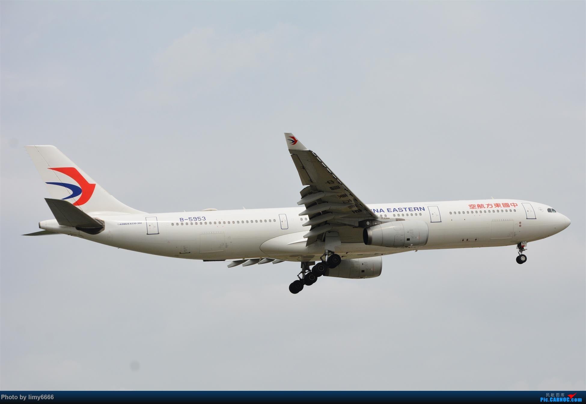 Re:[原创]上海虹桥机场拍机(在贵阳很少见或看不见的) AIRBUS A330-300 B-5953 中国上海虹桥国际机场