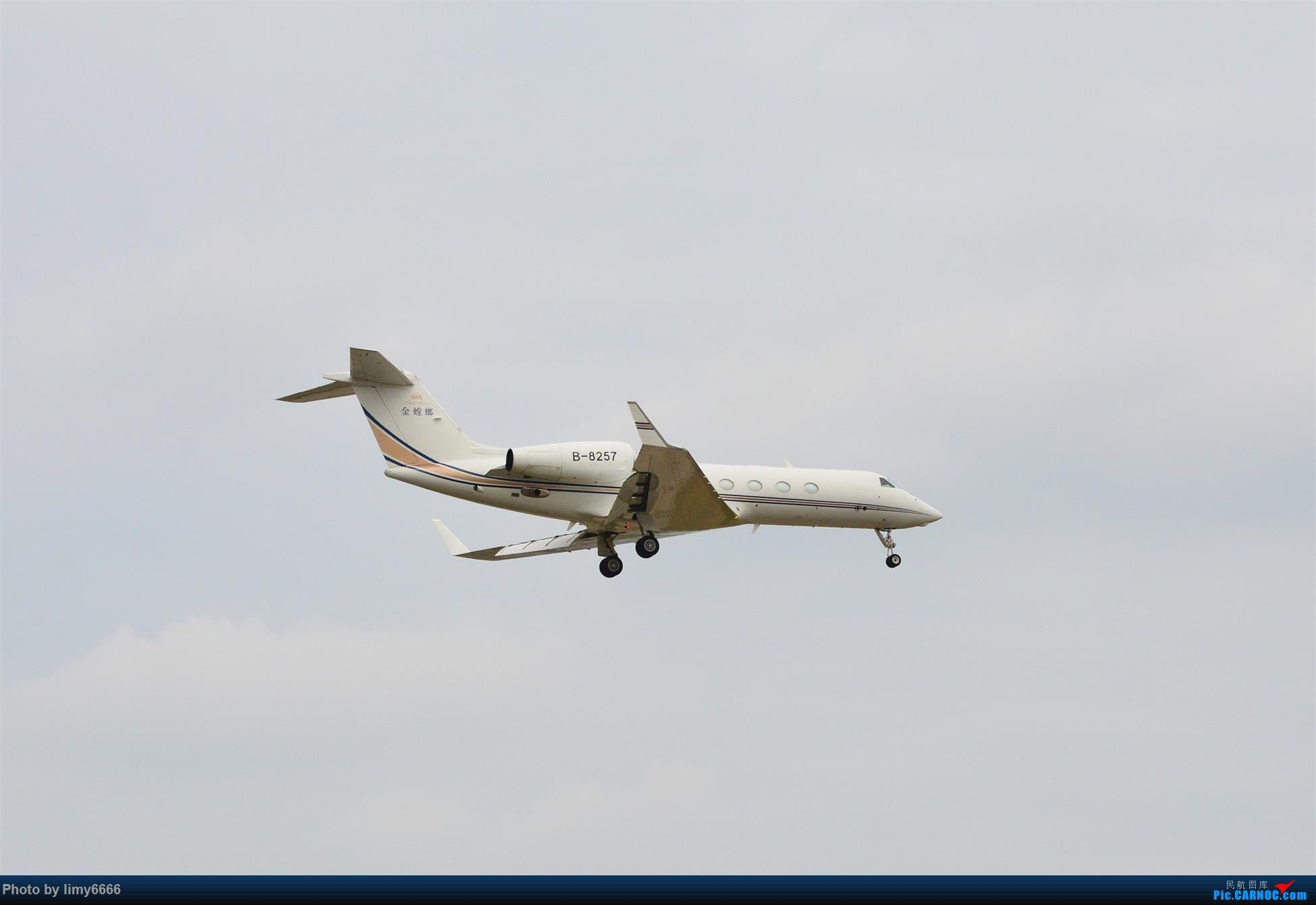 Re:[原创]上海虹桥机场拍机(在贵阳很少见或看不见的) GULFSTREAM G550 B-8257 中国上海虹桥国际机场