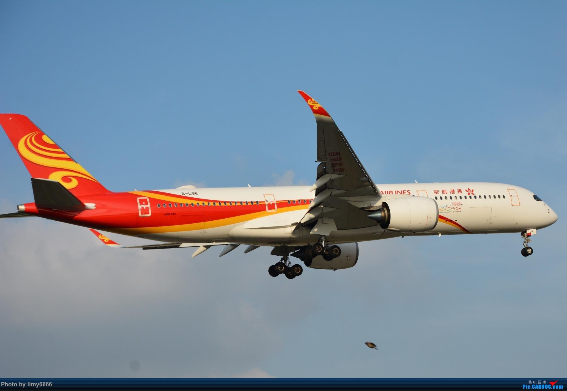 Re:[原创]上海虹桥机场拍机(在贵阳很少见或看不见的) AIRBUS A350-900 B-LGE 中国上海虹桥国际机场