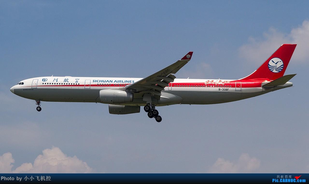 [原创](单图)欧气满满双流一号 AIRBUS A330-300 B-308F 中国厦门高崎国际机场
