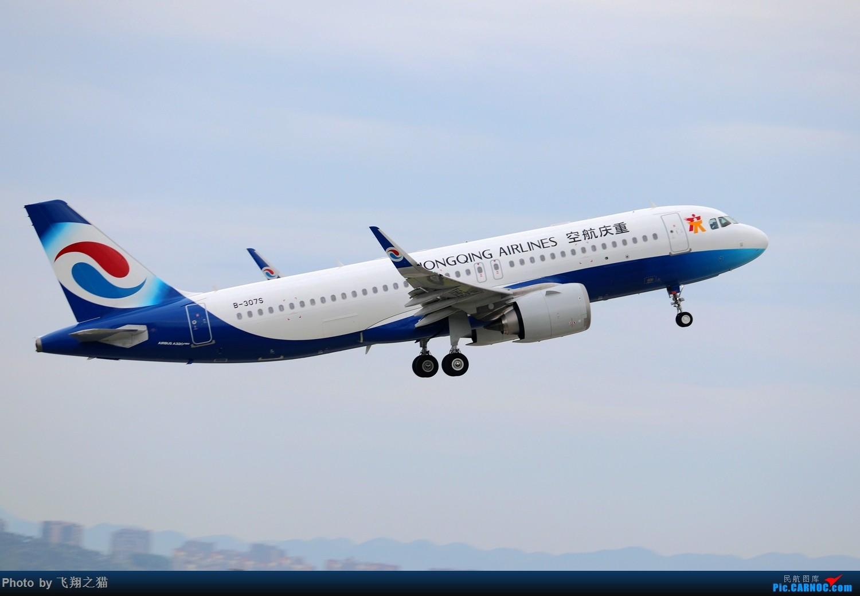 Re:[原创]CKG拍机(2019暑期3跑拍机图集) AIRBUS A320NEO B-307S 重庆江北国际机场