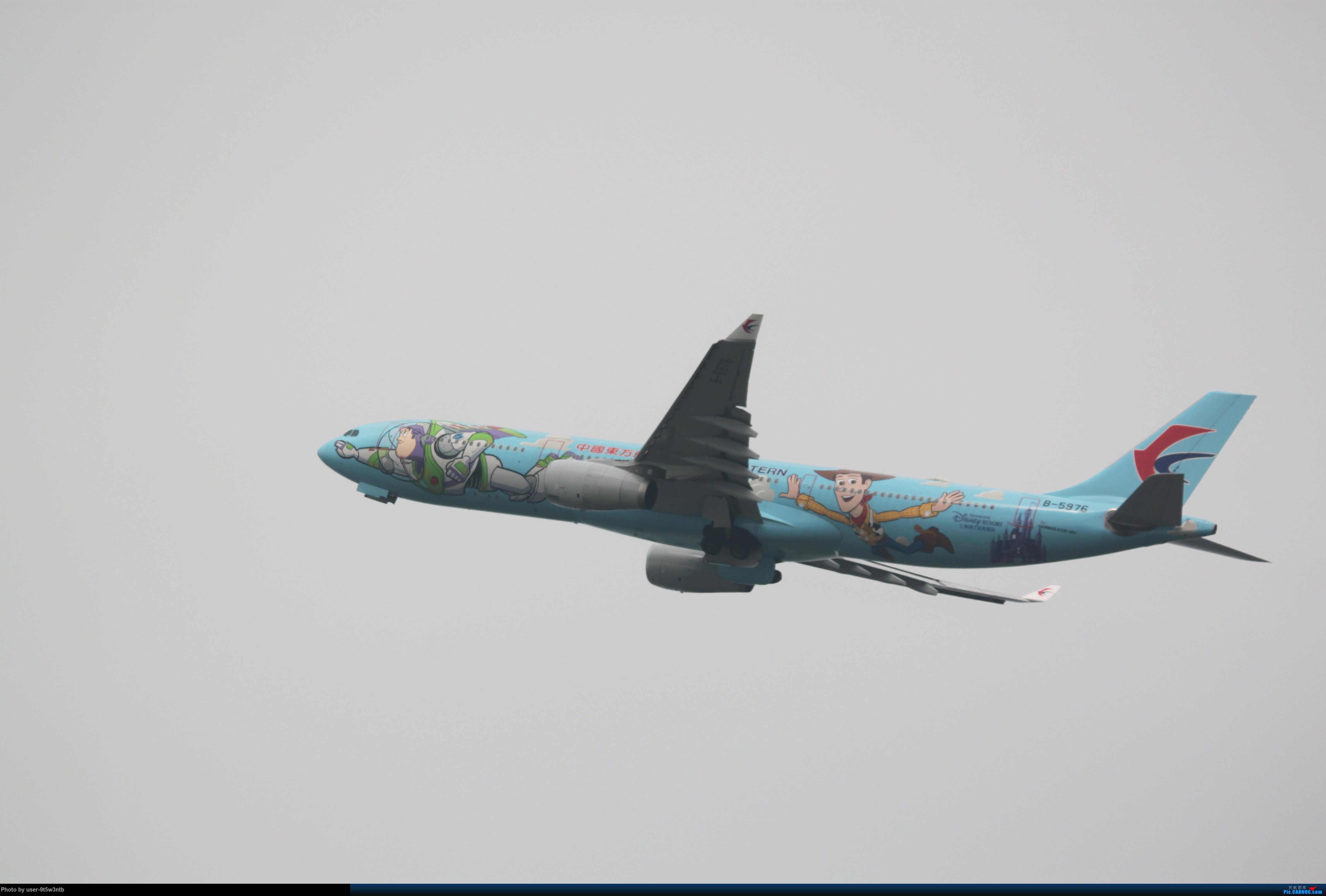 [原创]来整理下最近在虹桥拍到的彩绘机吧~ AIRBUS A330-300 B-5976 中国上海虹桥国际机场