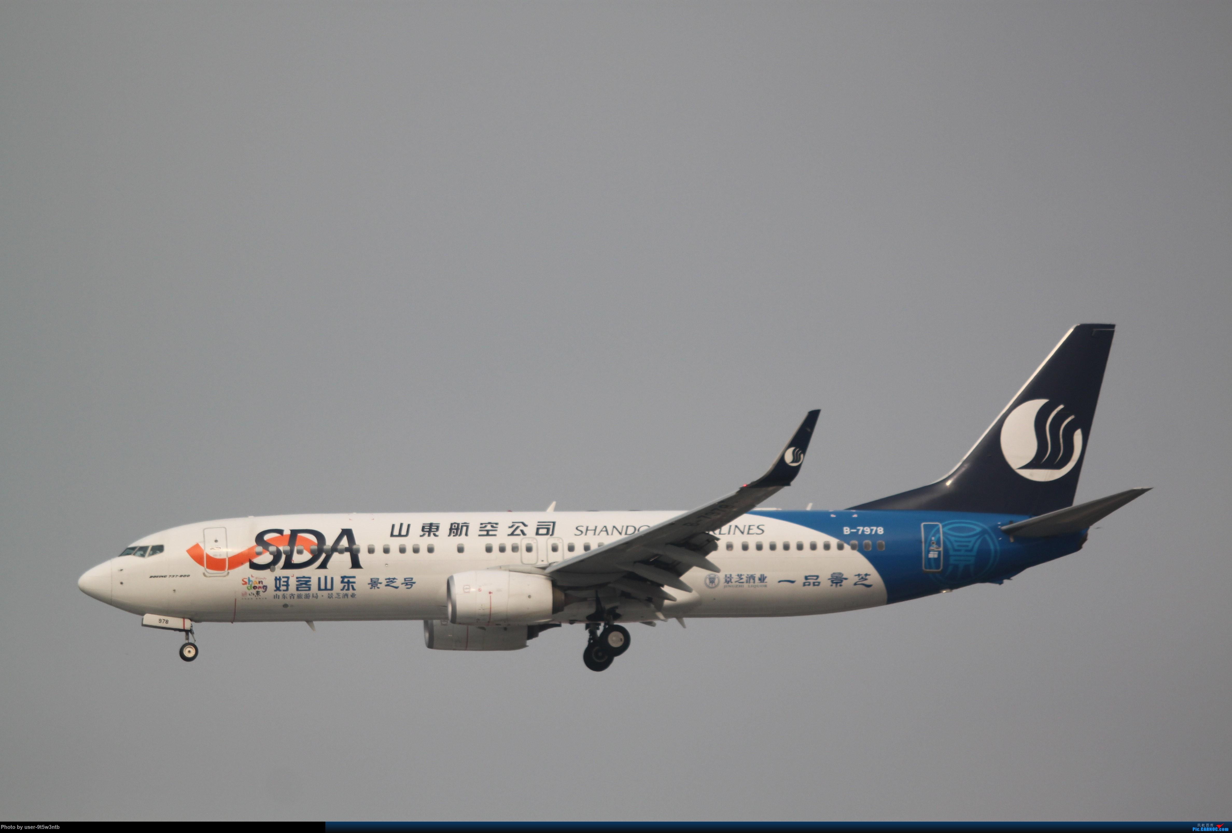 Re:[原创]来整理下最近在虹桥拍到的彩绘机吧~ BOEING 737-800 B-7978 中国上海虹桥国际机场