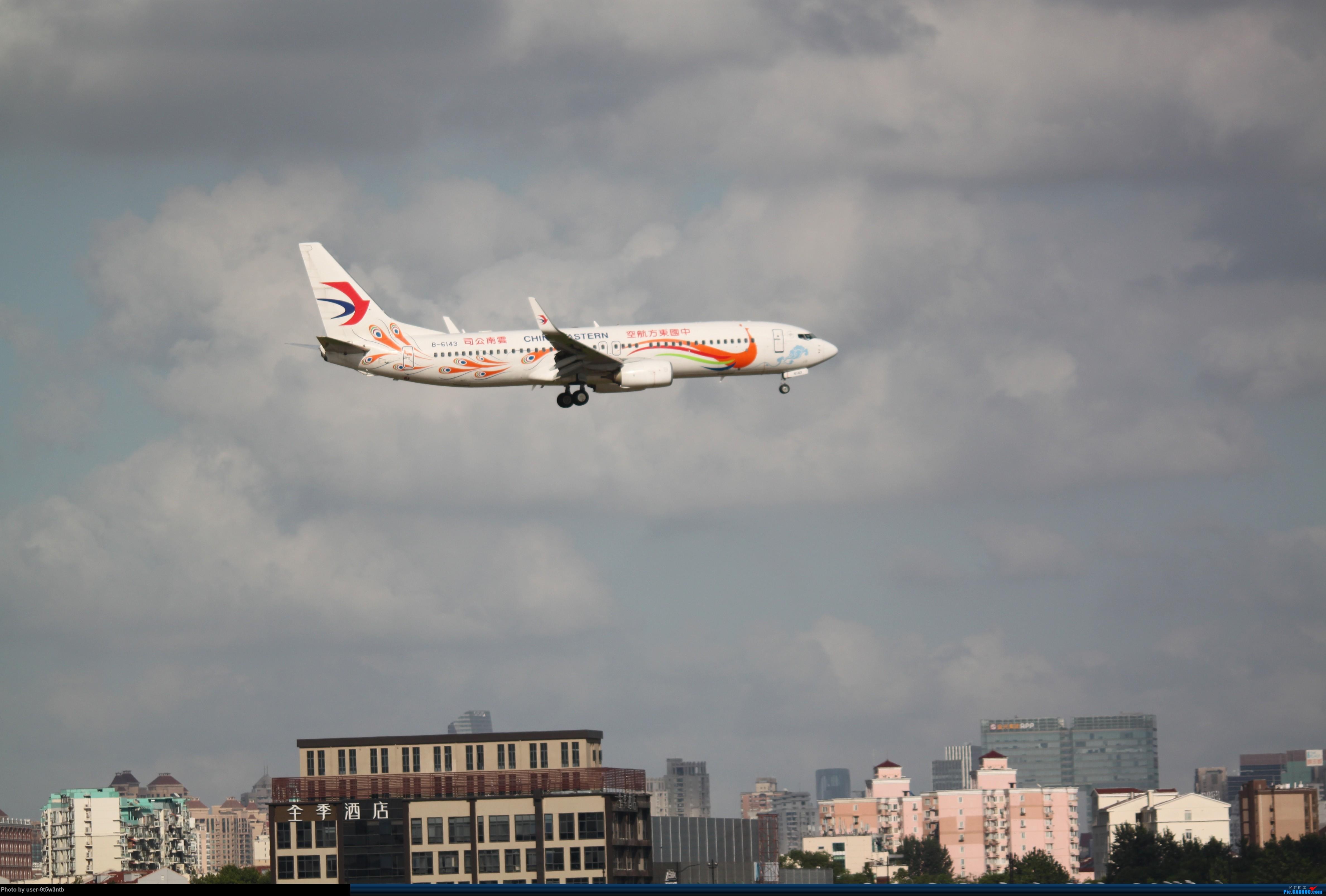 Re:[原创]来整理下最近在虹桥拍到的彩绘机吧~ BOEING 737-800 B-6143 中国上海虹桥国际机场