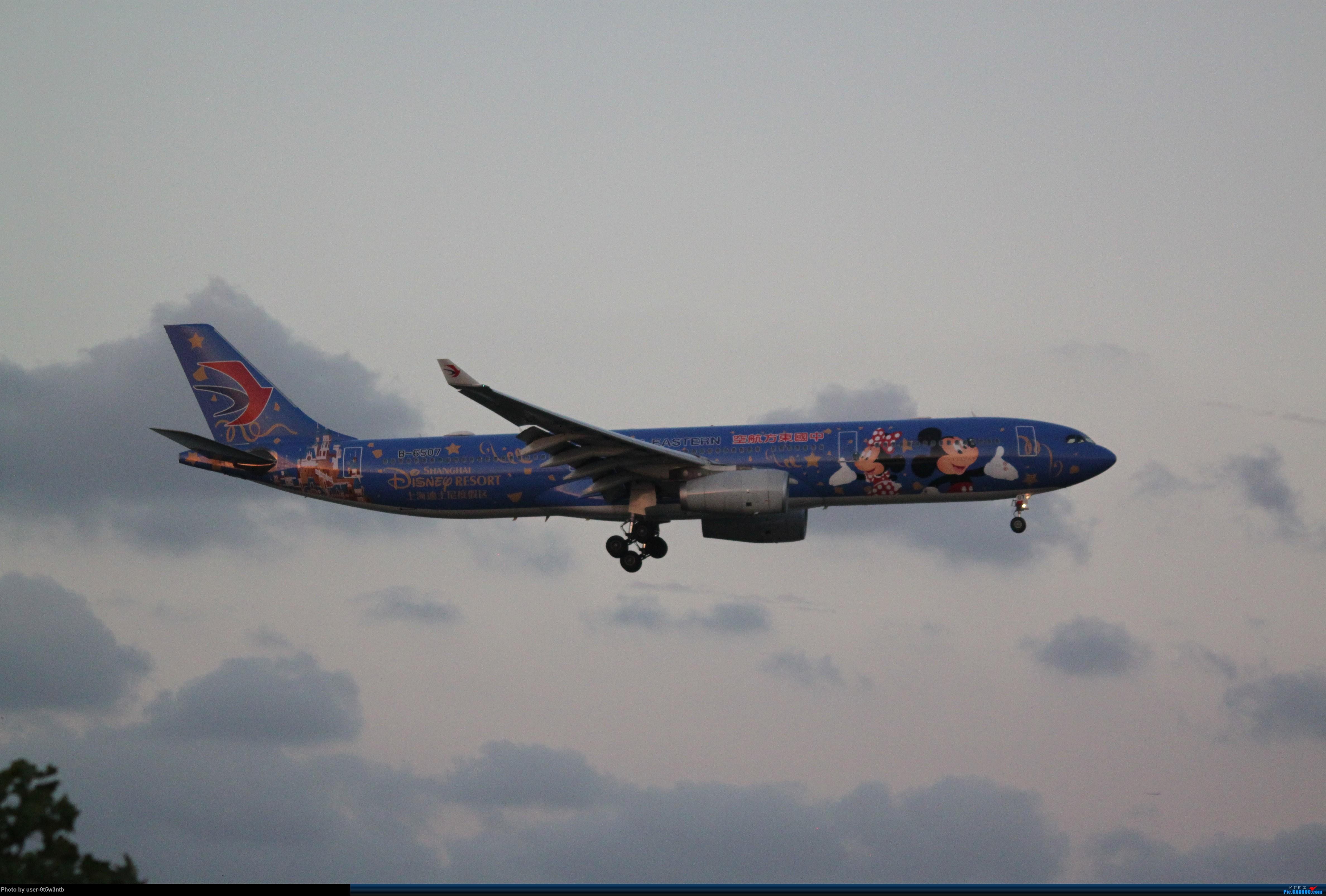 Re:[原创]来整理下最近在虹桥拍到的彩绘机吧~ AIRBUS A330-300 B-6507 中国上海虹桥国际机场