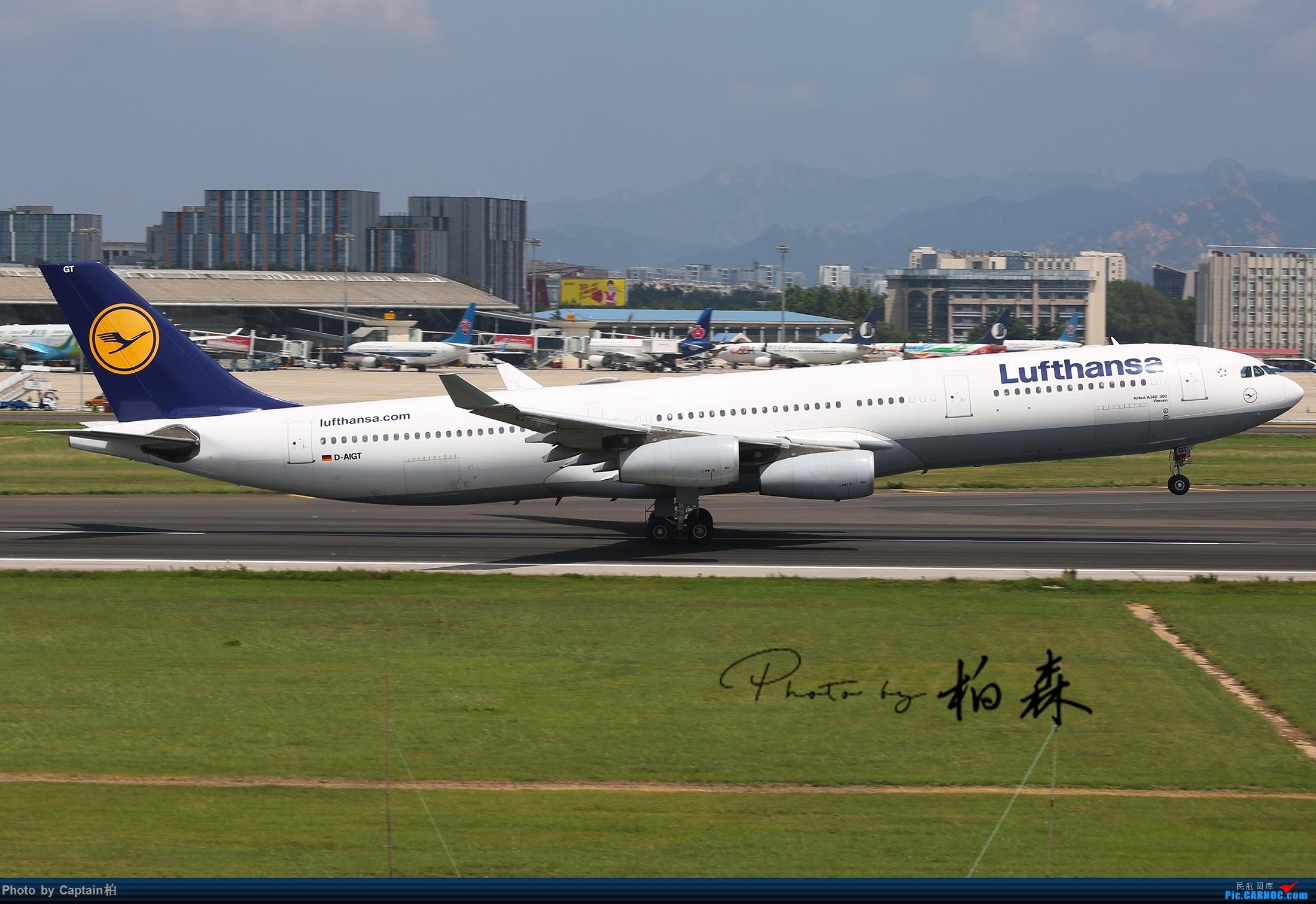 Re:[原创]八月流亭~~ AIRBUS A340-300  中国青岛流亭国际机场