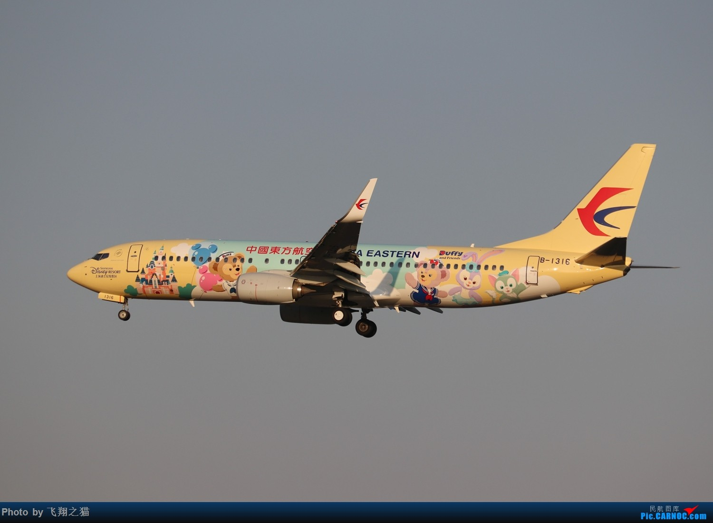 Re:[原创]东航达菲联萌号首航CKG BOEING 737-800 B-1316 重庆江北国际机场