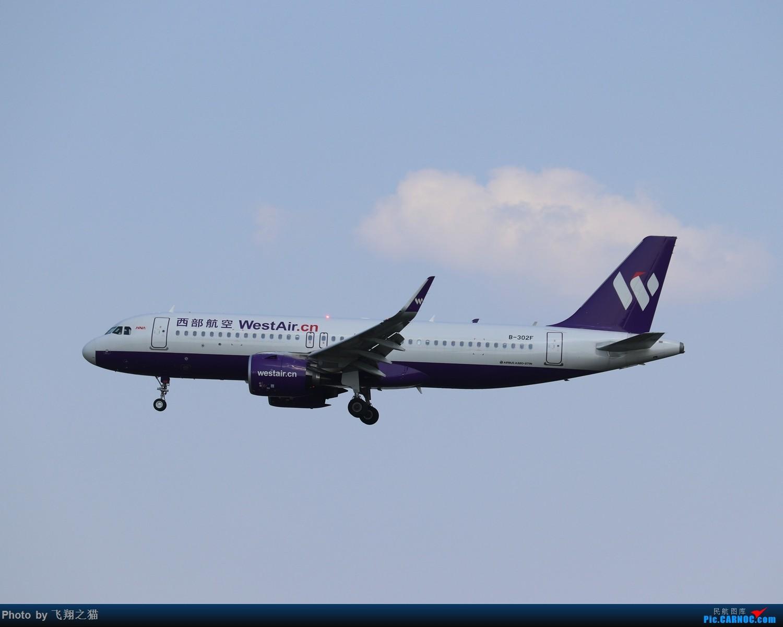 Re:[原创]CKG拍机(2019战高温2跑下滑道拍机) AIRBUS A320NEO B-302F 重庆江北国际机场