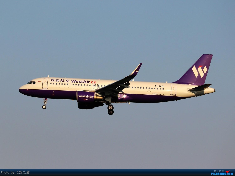 Re:[原创]CKG拍机(2019战高温2跑下滑道拍机) AIRBUS A320-200 B-9981 重庆江北国际机场