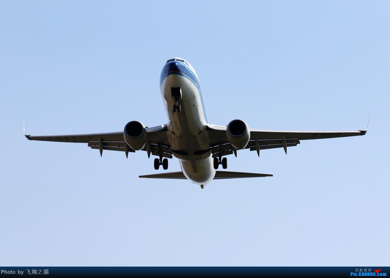 Re:[原创]CKG拍机(2019战高温2跑下滑道拍机) BOEING 737-800  重庆江北国际机场