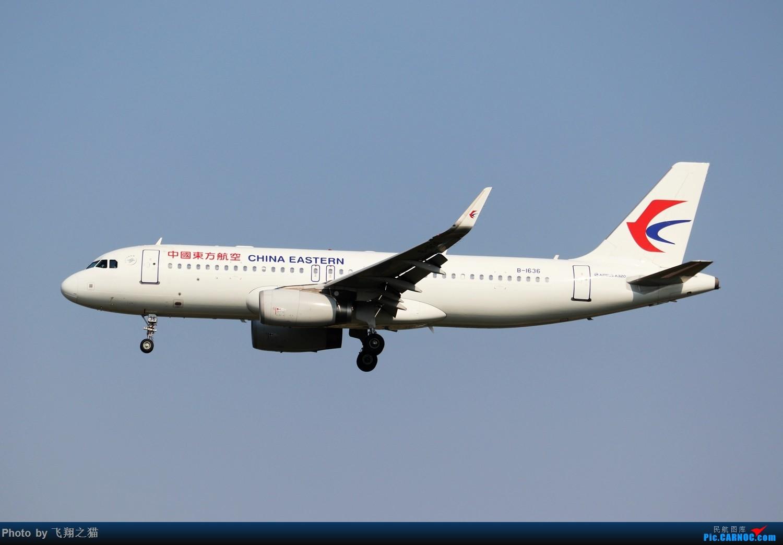 Re:[原创]CKG拍机(2019战高温2跑下滑道拍机) AIRBUS A320-200 B-1636 重庆江北国际机场