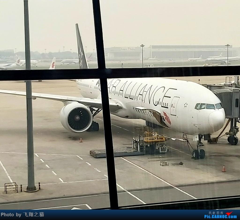 Re:[原创]飞翔之猫游记(2019暑期北京之旅) BOEING 777-300ER  北京首都机场