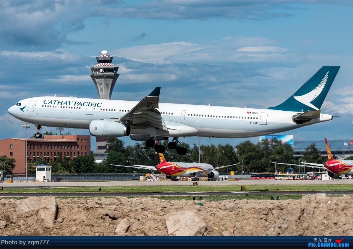 Re:[原创]【PEK】北京拍机杂图 AIRBUS A330-300 B-LAE 中国北京首都国际机场