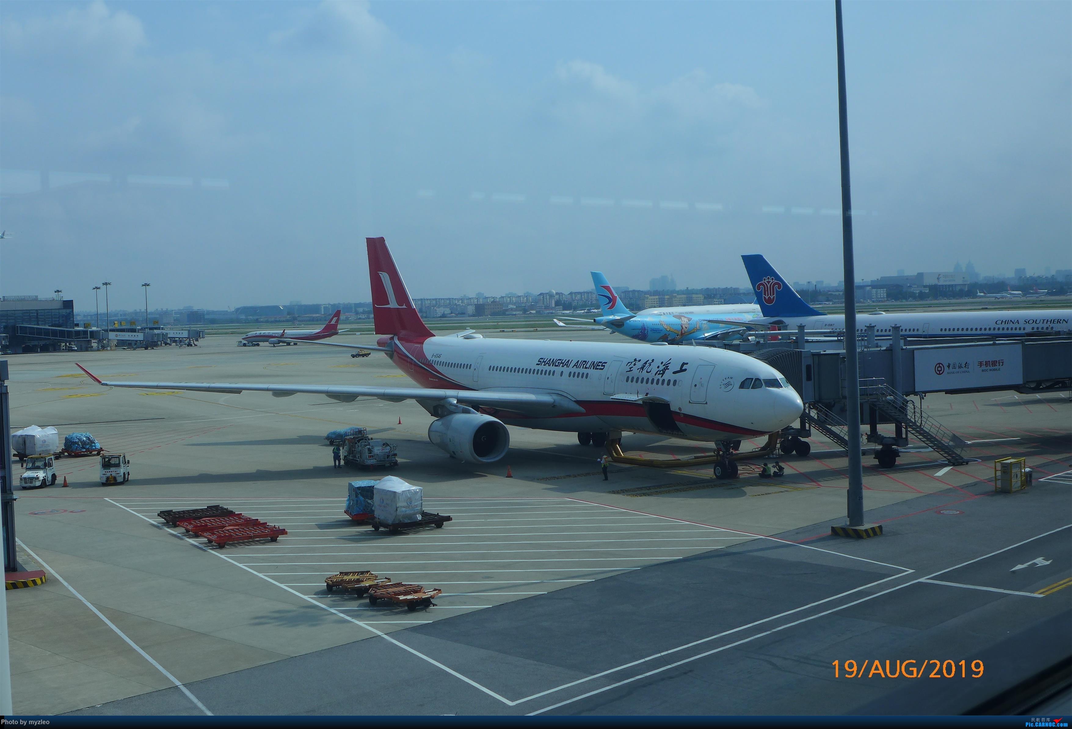 Re:[原创]【myzleo的游记5.1】梦圆一九(1)首搭国航359,北京城里到处走 AIRBUS A330-200 B-6546 中国上海虹桥国际机场