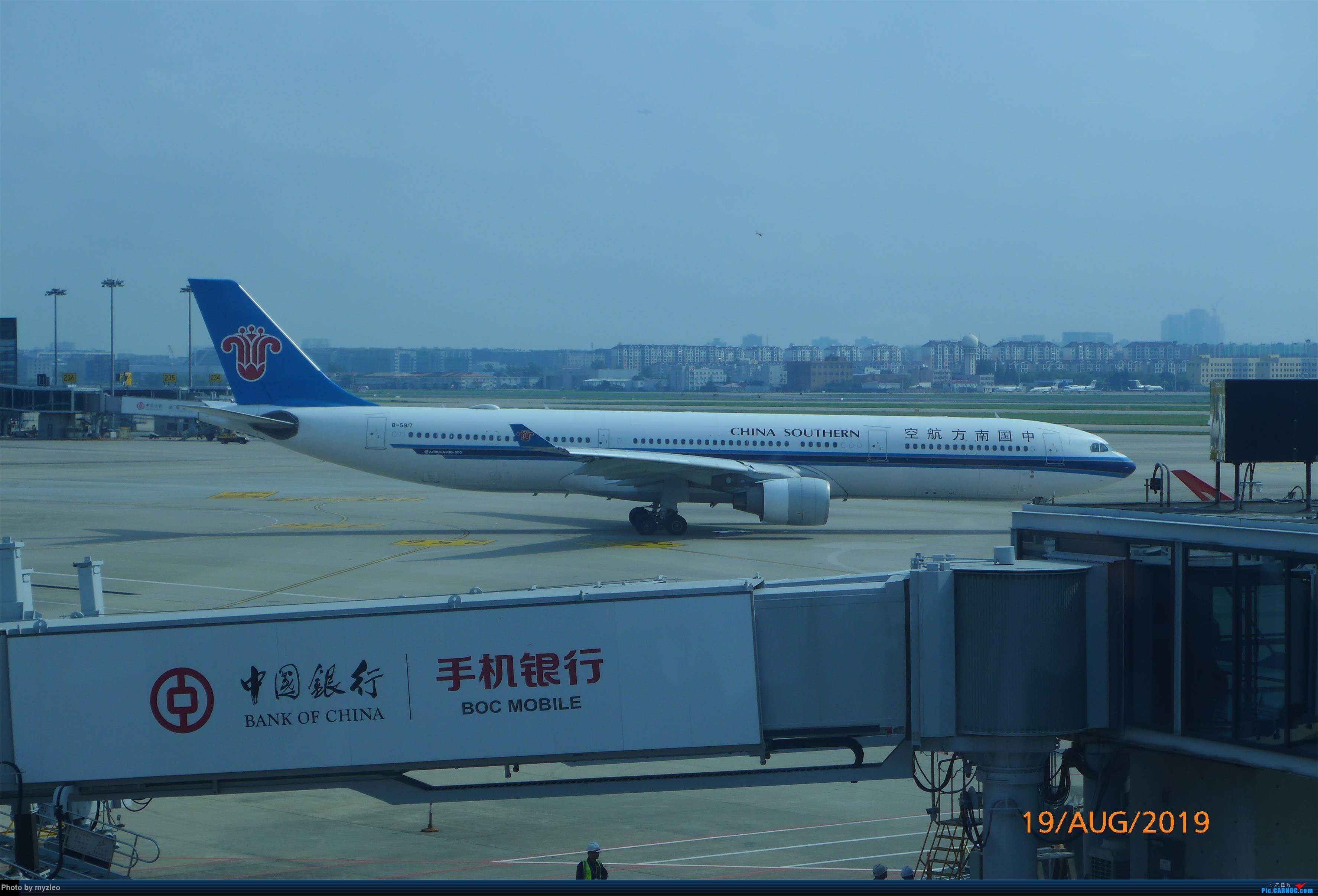 Re:[原创]【myzleo的游记5.1】梦圆一九(1)首搭国航359,北京城里到处走 AIRBUS A330-300 B-5917 中国上海虹桥国际机场